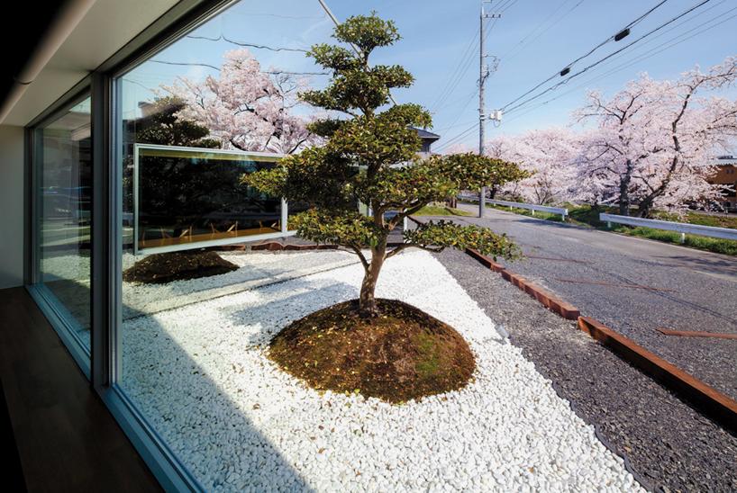 映射樱花美景镜面咖啡店