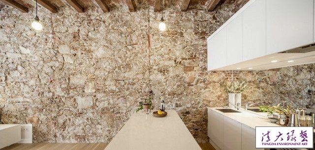 巴塞罗那:爱猫女士的单身公寓设计