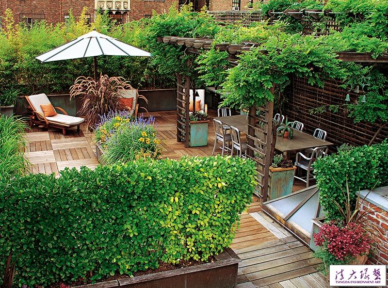 楼顶上的私家花园