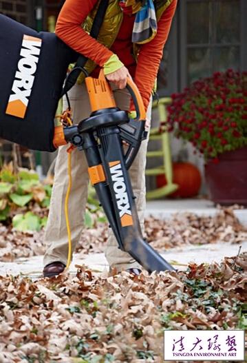 得力工具 助扫落叶