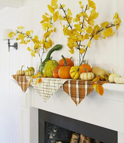 采集树叶可以将它们用于家居装饰表达秋天丰收的季节