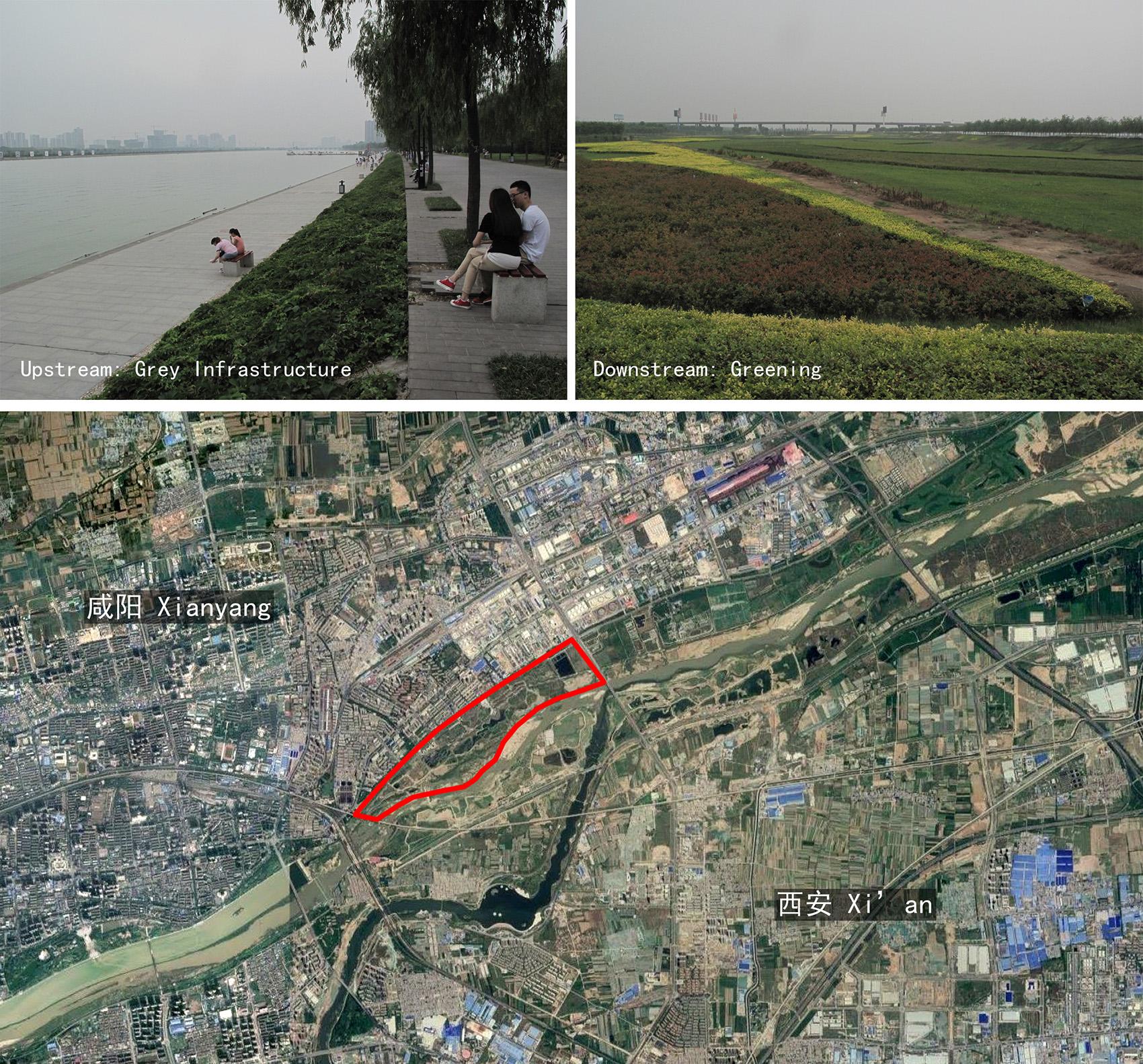 陕西渭柳湿地公园景观设计