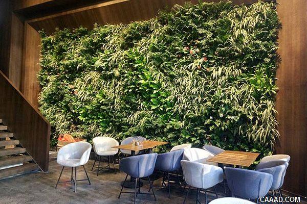 酒店绿化设计的作用
