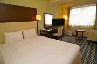 商务酒店客房设计说明