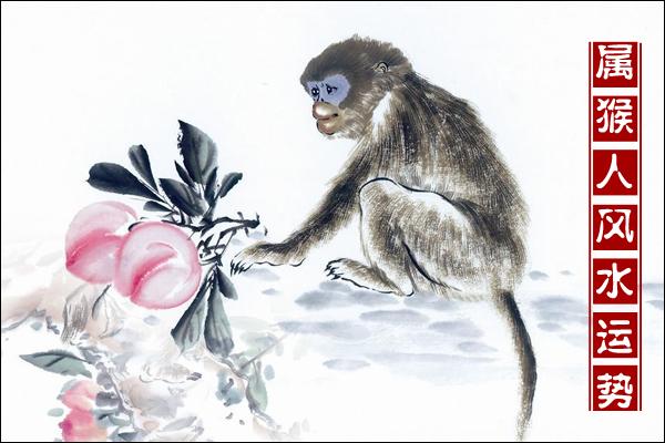 属猴的今年多大了 属猴人2014运势