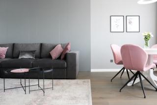 公寓室内装饰通透的布局,简单的线条,几何形状